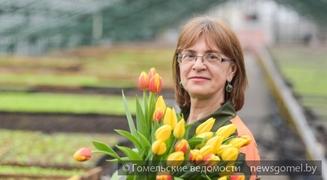 ДКСУП «Красная гвоздика» подготовило горожанам 18 тысяч тюльпанов разной окраски ко Дню женщин