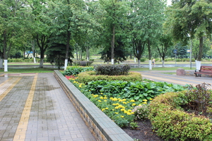 ул. Кожара ( сквер « Строителей)